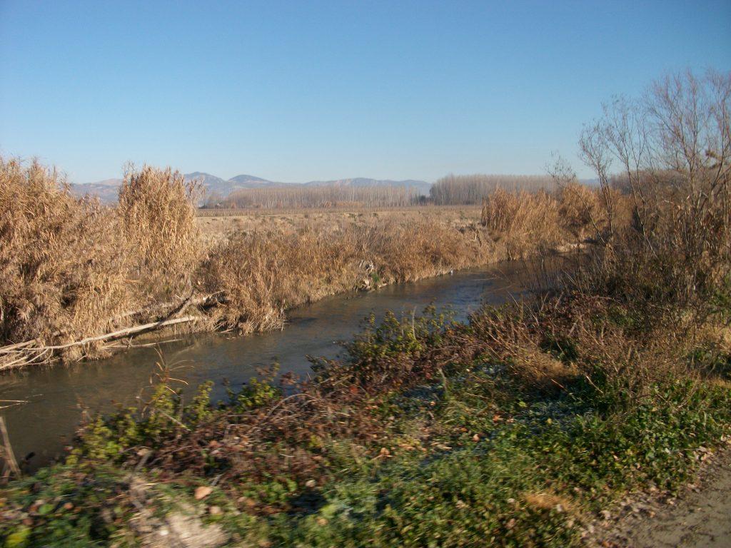CANAL DE CACIN 4-10