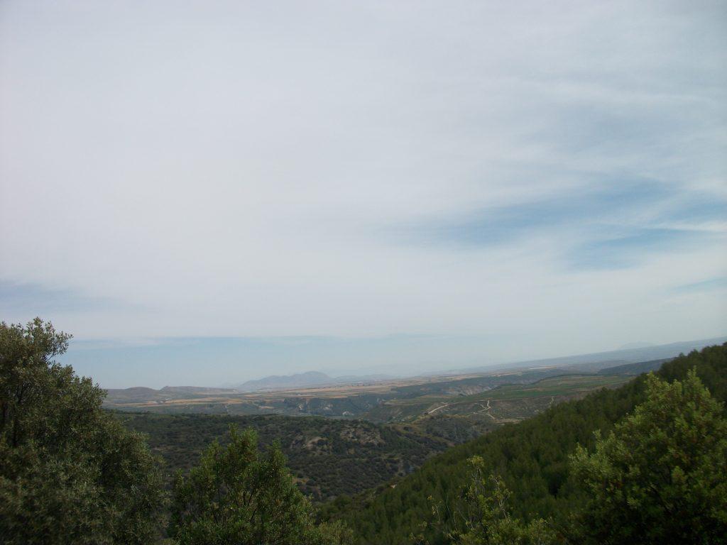 DOMINGO 06-06